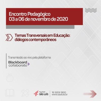 Encontro Pedagógico - 03 a 06 de novembro de 2020